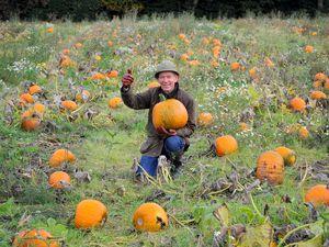 Richard Simkin from Essington Farm, is all set for the pumpkin season