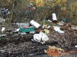 Fly-tipping appeal after curry and catering goods dumped in country lane