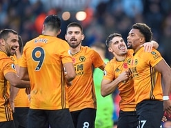 Wolves v Newcastle preview