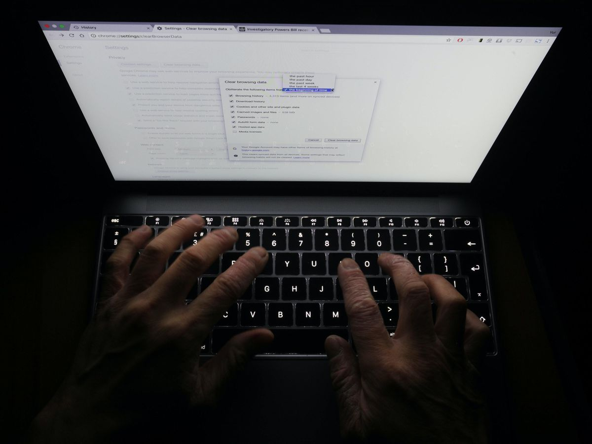 A person browsing the internet