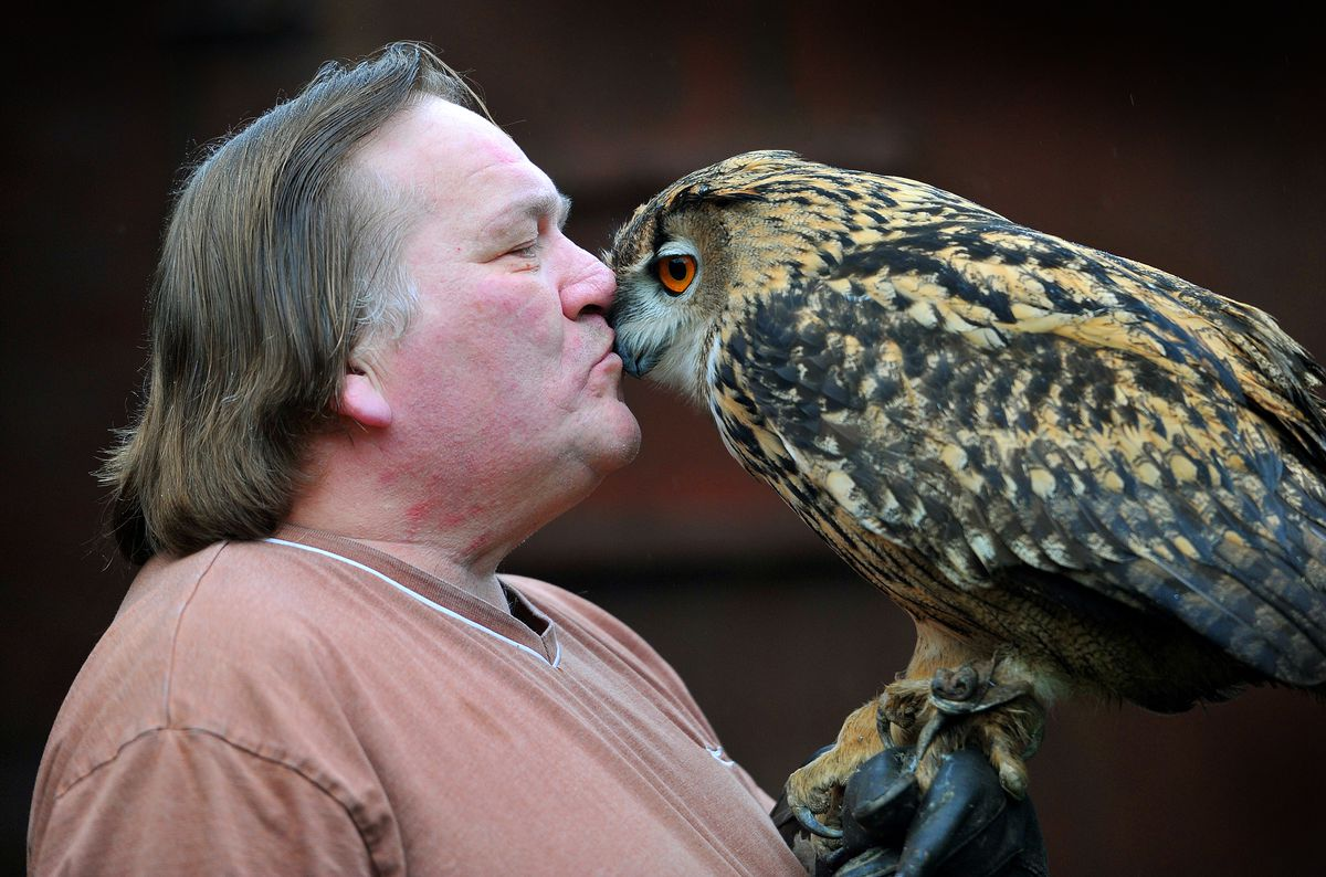 Dedicated – Karl Perry with Boo the European Eagle Owl – one of the many owls he continues to care for during lockdown