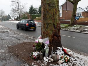 The tree now without the tributes - although the ones on the ground remain
