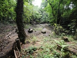 Dudley Council agrees to buy back Saltwell's Nature Reserve