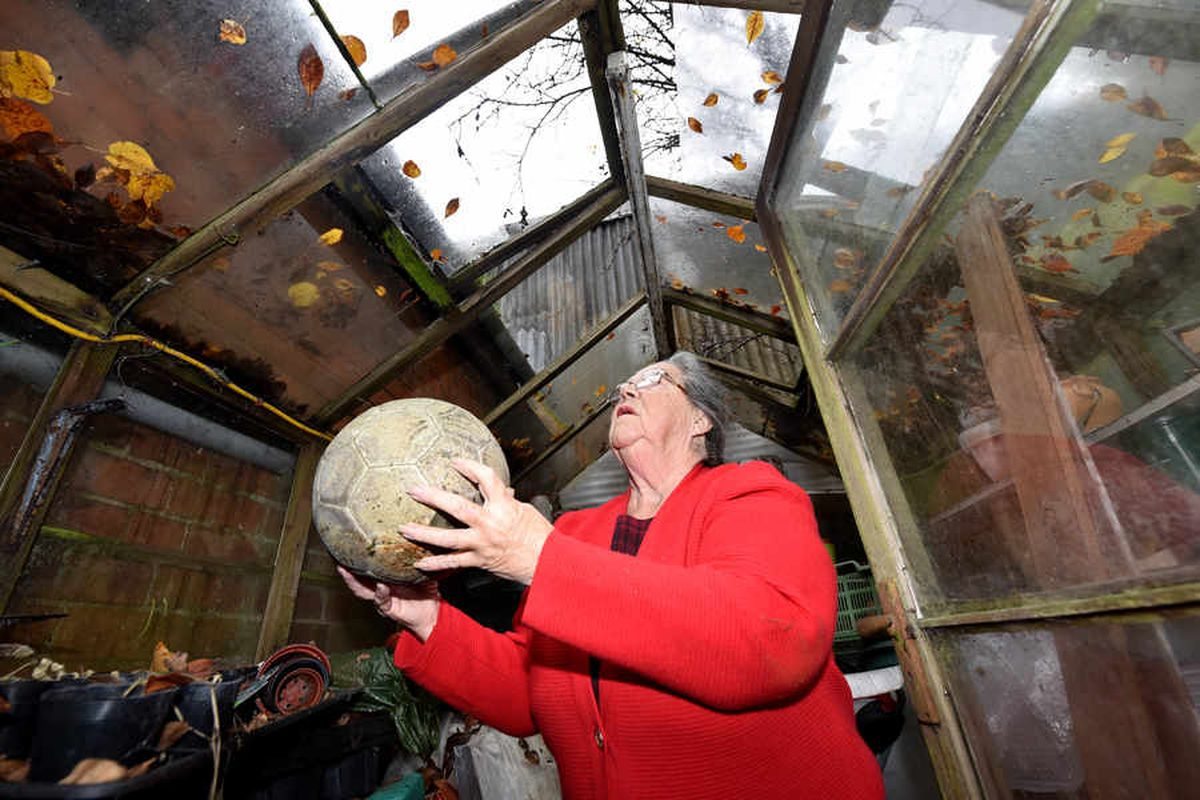 Mary says glass panels in her greenhouse have been smashed over the years