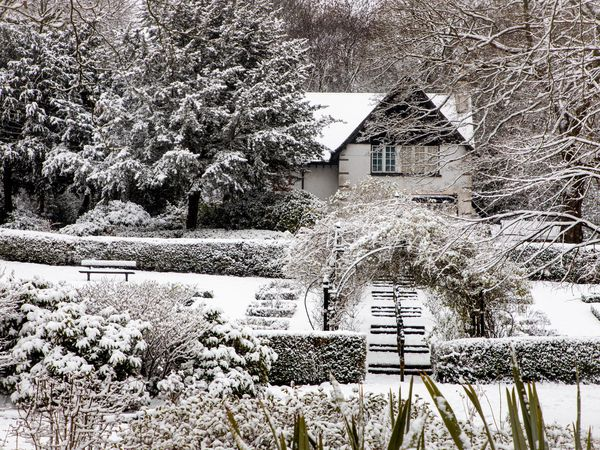 Walsall Arboretum in the snow. Pic: Steve Kendrick