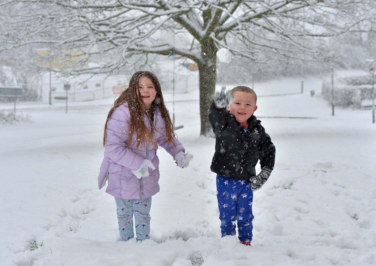Snowballs in Hednesford